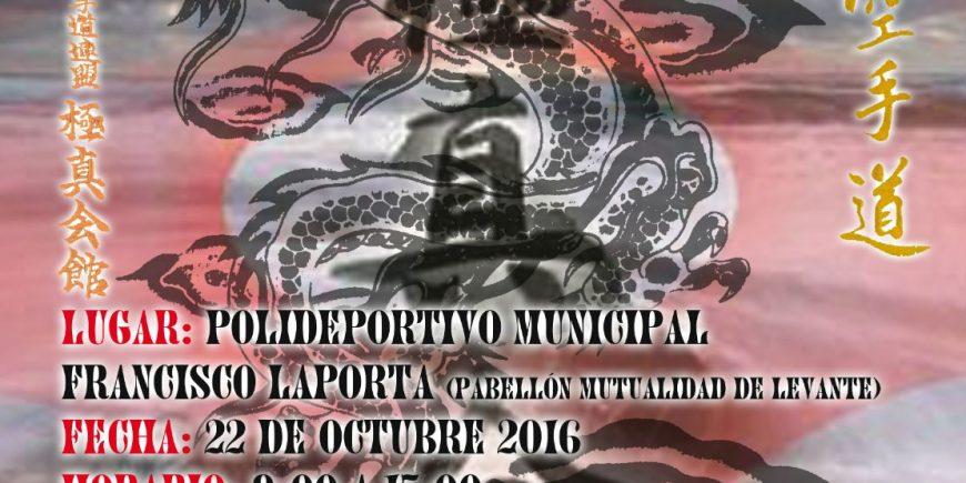 XIII Open Ciudad de Alcoy